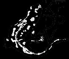 Edice Amphibios
